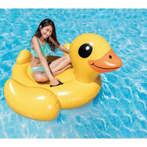 Buy Swimming Pool Items